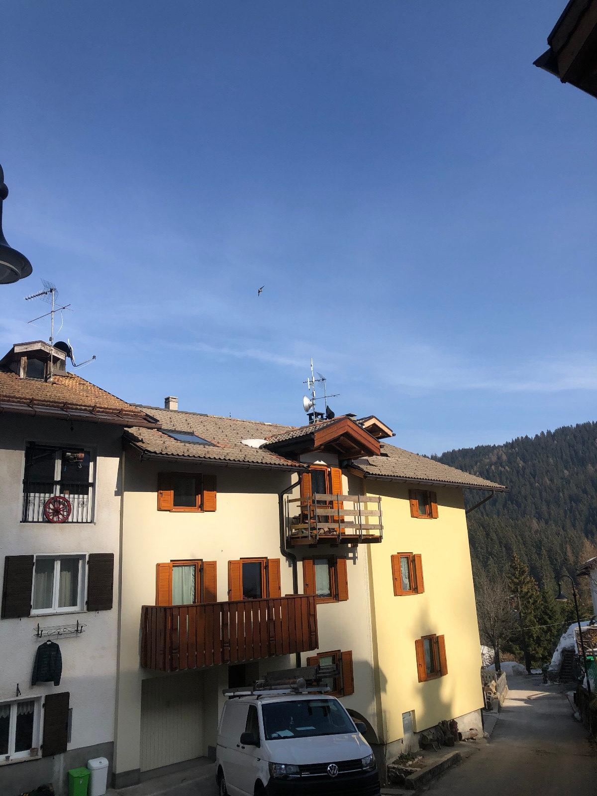 Linea Veloce Trentino - BTS Tezzeli (TN)